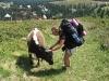 Jitka s krávou